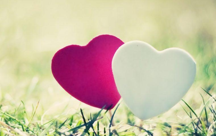 ブログ 日本で心のバリアフリーが進まないのはなぜ?